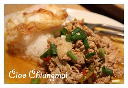 090329_chiangmai_2