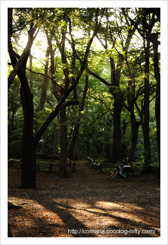 090906_inokashira.jpg