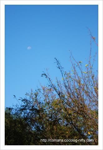 090910_moon