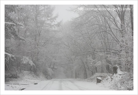 091207_snow_2