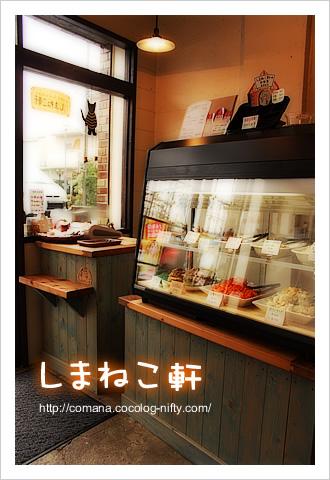 100325_shimaneko_1