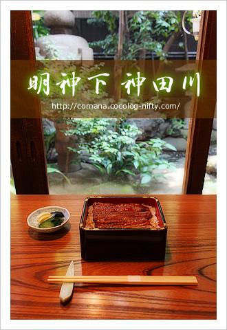 100724_kandagawa_1