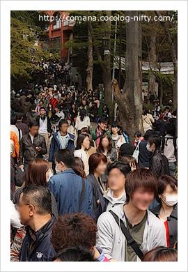 110410_inokashira_2