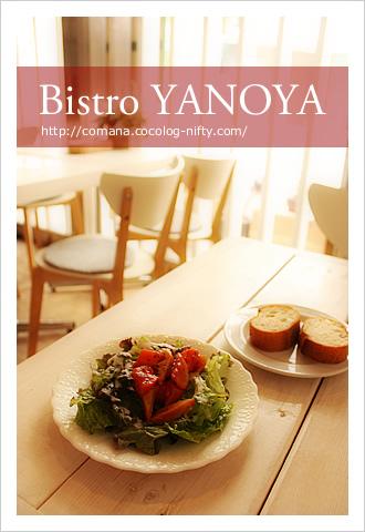 110530_yanoya_1
