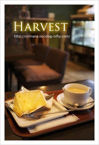 121113_harvest_1