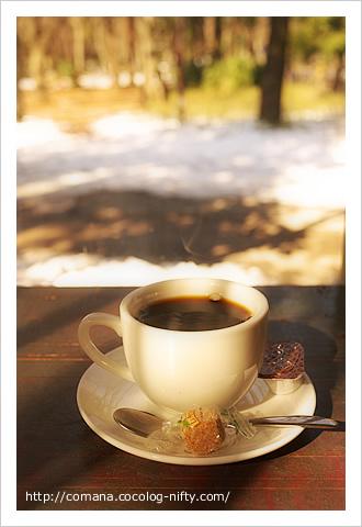日だまりとコーヒー
