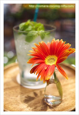 トレーに一輪の花
