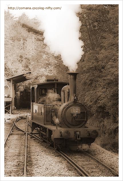蒸気機関車にも乗れます