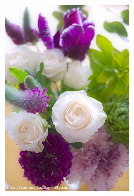 旦那からもらったお花