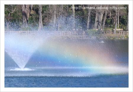 たなびく噴水と虹