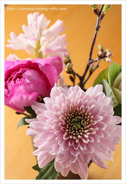 大晦日のお花