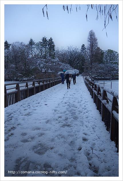 七井橋が大雪で大変!