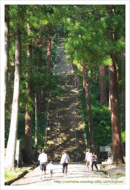 菩提梯 登り切るのは大変でした!