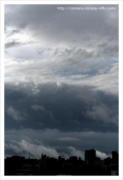 嵐の前の…