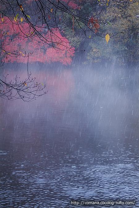 水面から蒸気霧が!