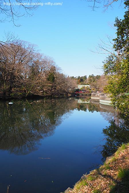 晴れの日の弁天池