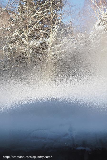 窓を開けてビックリ