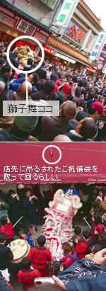 050211_shishimai